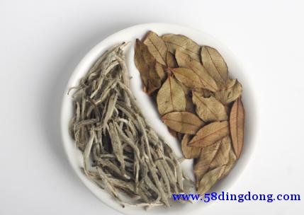 柠檬清甜,白茶馥郁,贝安爵BIOANGEL打造现代茶饮新范